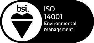 BSI ISO