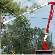 Cherry Picker Hire for Tree Surgeon
