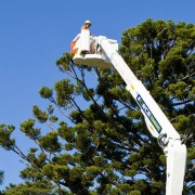 Cherry Picker for Railroad Maintenance